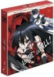Akame Ga Kill!! - Parte 2 (Episodios 13 A 24) (Blu-Ray + Libro) (Ed. Coleccionista)
