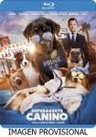 Superagente Canino (Blu-Ray)