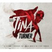 Many Faces of Tina Turner CD(3)