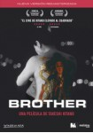 Brother (Divisa)