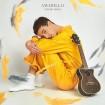Amarillo (David Rees) CD