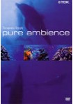 Pure Ambience : Therapeutic Temple