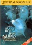National Geographic : La Cara Oculta De Los Delfines