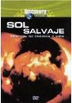 Discovery Channel : Sol Salvaje, Central De Energía Y Vida