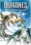 Dragones: Una Leyenda Hecha Realidad