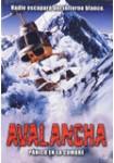 Avalancha : Pánico En La Cumbre