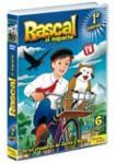 Pack 6 DVD, Rascal, El Mapache: 1ª Temporada