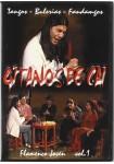 Flamenco Joven - Volumen 1