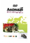Animals entremaliats ( Animales traviesos ) DVD