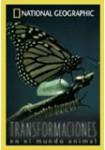 Transformaciones en el Mundo Animal