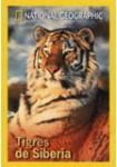 National Geographic : Tigres De Siberia