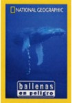 National Geographic : Ballenas en Peligro