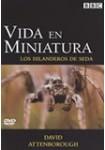 Vida en Miniatura: Los hilanderos de seda DVD