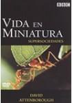 Vida en Miniatura: Supersociedades DVD