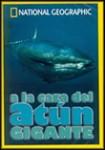 A la Caza del Atún Gigante (National Geographic)
