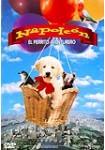 Napoleón : El Perrito Aventurero