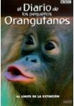El Diario de los Pequeños Orangutanes