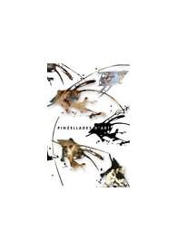 Pinzellades D´ART DVD