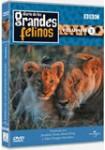 Diario de los Grandes Felinos - Volumen 2