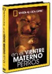 En el Vientre Materno: Perros
