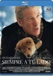 Siempre A Tu Lado (Hachiko) (Blu-Ray)