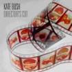 Director´s Cut: Kate Bush CD (1)