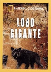 National Geographic : Lobo Gigante