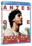 Antes Que Anochezca (Blu-Ray)