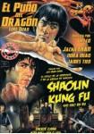 El Puño del Dragón + Shaolin Kung Fu