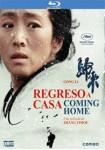 Regreso A Casa (Blu-Ray)