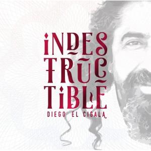 Indestructible: Diego El Cigala CD