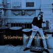 Out Of All This Blue (The Waterboys) CD