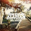 Southern Blood: Gregg Allman CD