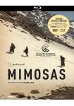Mimosas (Blu-Ray + DVD) (V.O.S.)