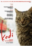 Kedi, Gatos De Estambul
