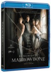 El Secreto De Marrowbone (Blu-Ray)